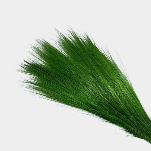 Plante stabilizate 14 Verde 2