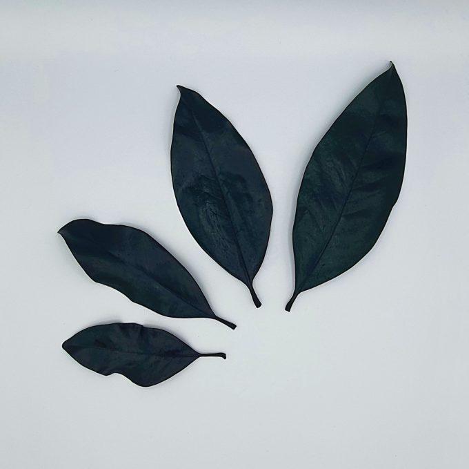 Frunze 9 verde 10